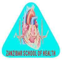 Zanzibar School of Health Fees Structure